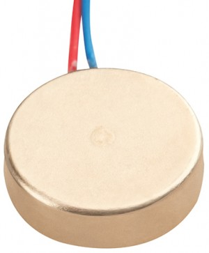 12mm coin motor