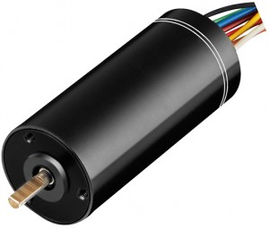22mm-bldc-motor-with-driver (1)